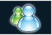 查看 MSN 技術支援服務資訊, 與專業技術支援人員聯絡
